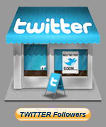 Buy Followers on Twitter Cheap